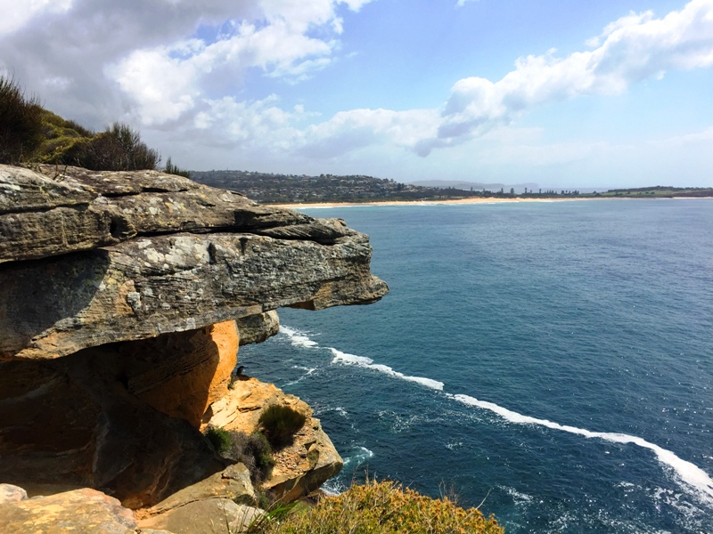 Dee-Why-Headland-to-Curl-Curl-Beach-Coastal-Walk